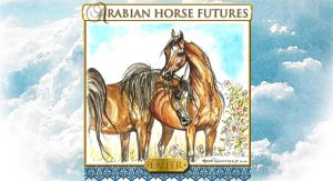 Arabian  Horse Futures