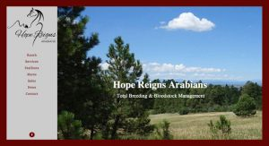 Hope Reigns Arabians