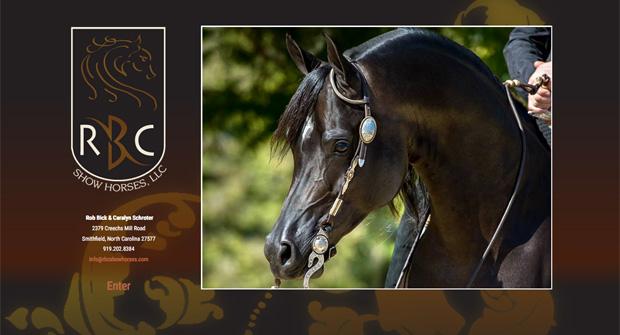 RBC Show Horses