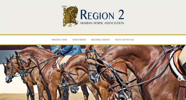 AHA - Region 2