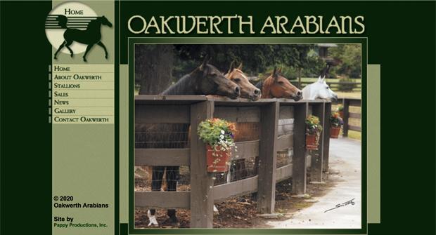 Oakwerth Arabians