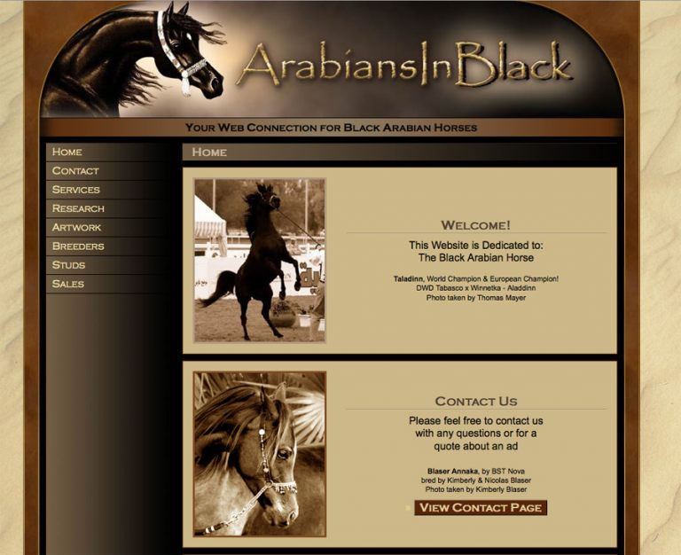 Arabians in Black