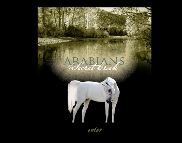 Arabians of Secret Creek