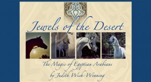 Jewels of the Desert