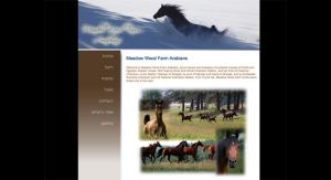 Meadow Wood Farm Arabians