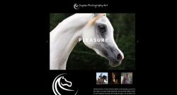 Equine Photography Art