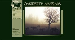 Oakwerth Arabians