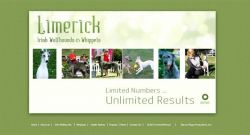 Limerick Irish Wolfhounds and Whippets